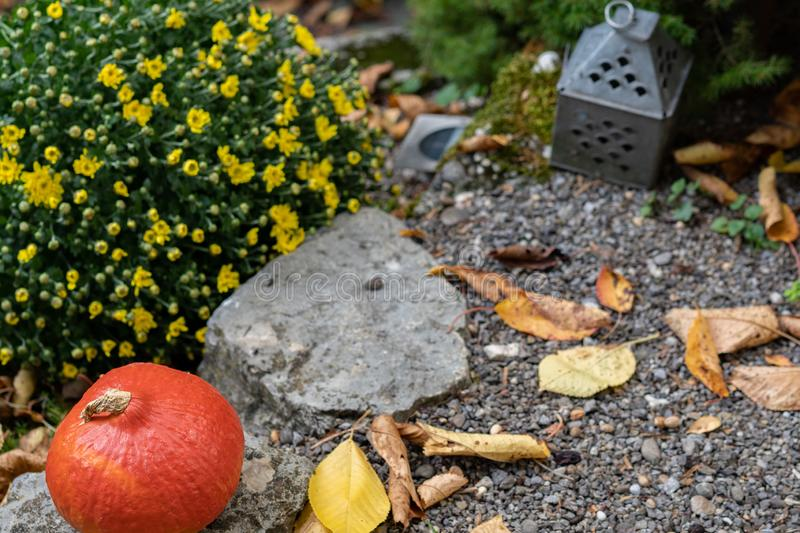 Orange pumpkin on gravel with rustic yellow flower bouquet and autumn leafs and tin lantern in background. High angle view royalty free stock photo