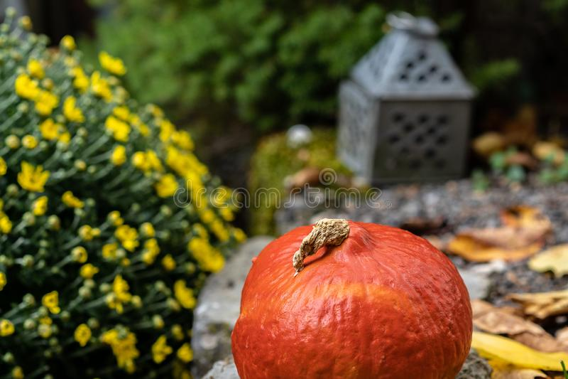 Orange pumpkin with tin lantern in background and yellow flower bouquet and autumn leafs. High angle view stock photography