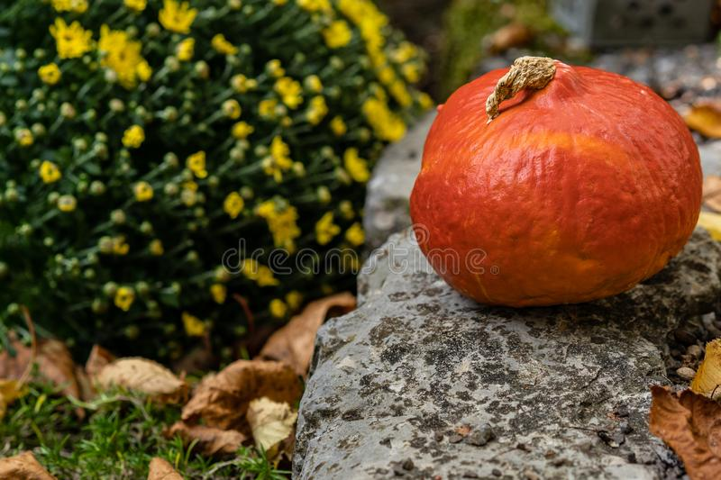 Orange pumpkin on gravel with tin lantern in background and yellow flower bouquet and autumn leafs. High angle view stock photos