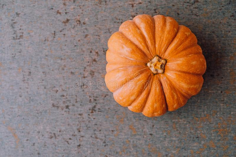 Orange pumpkin on grey background, top view. Space for text. Autumn vegetables. Halloween, Thanksgiving food preparations.  stock photography