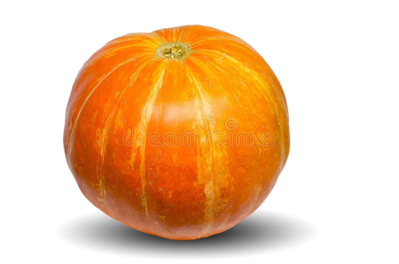 Orange pumpkin isolated on the white background stock images