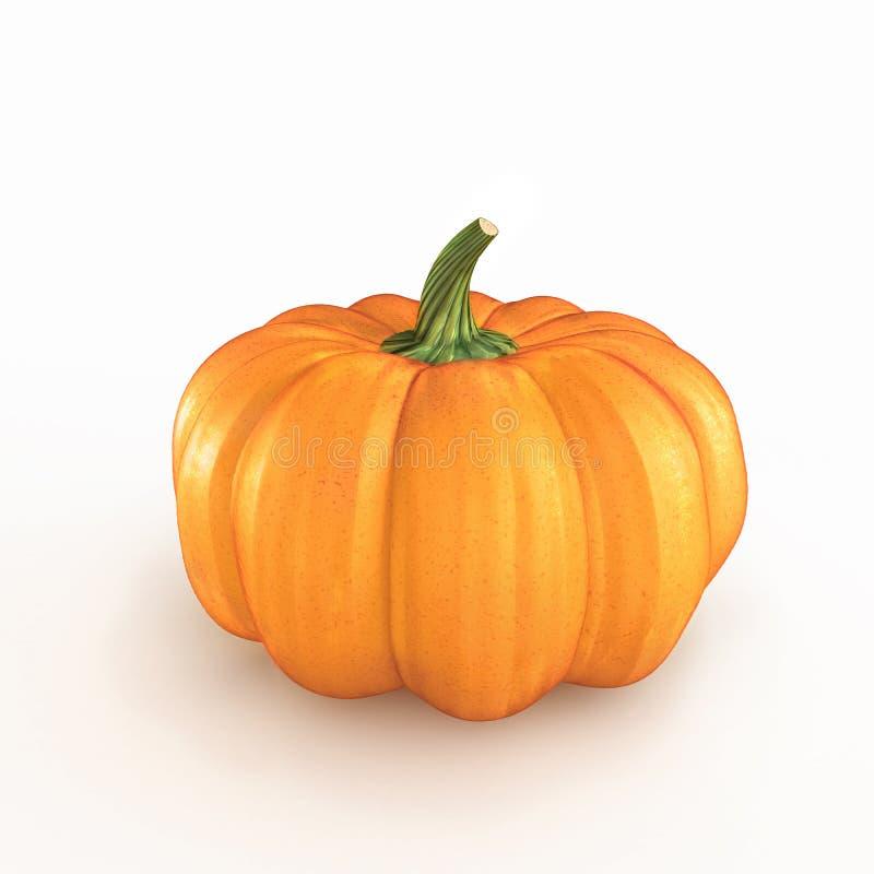 Free Orange Pumpkin On A White Background Stock Photos - 34328753
