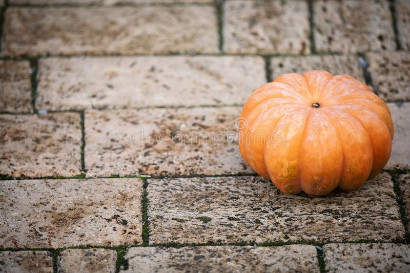 Orange pumpkin at outdoor farmer market. Colorful minimalism autumn Thanksgiving background with copy space for your stock images
