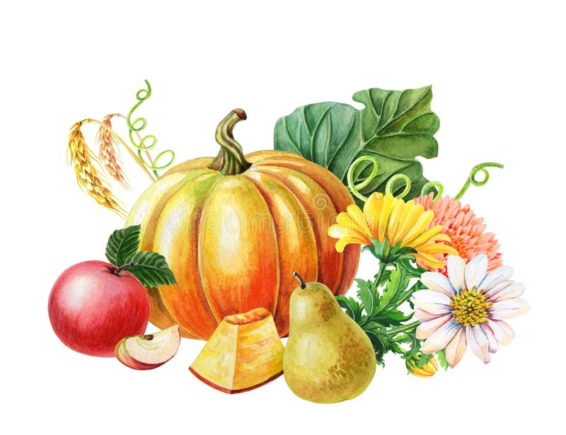 Orange pumpkin,Red apple,pear.Watercolor illustration on white background. Autumn harvest.Fresh vegetarian food stock illustration