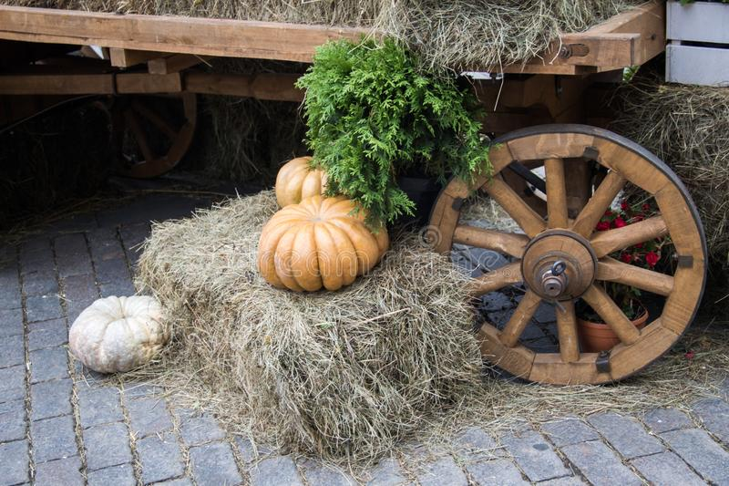 Orange pumpkins on hay decoration cartwheel background . Autumn street decoration. Rural market atmosphere concept stock image