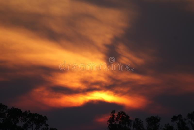 Orange purpurfärgade blåa solnedgångträd royaltyfri foto