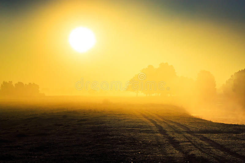 Orange rising sun over the river and the field in fog royalty free stock images