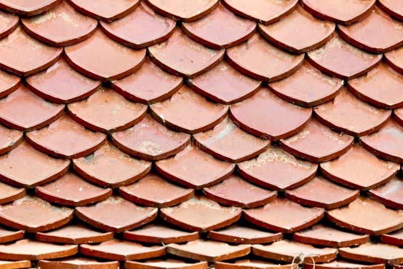 Orange Roof Pattern royalty free stock photos