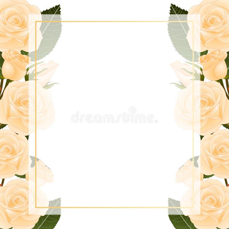 Orange Rose Flower Frame Banner Card Border. isolated on White Background. Vector Illustration.  stock illustration