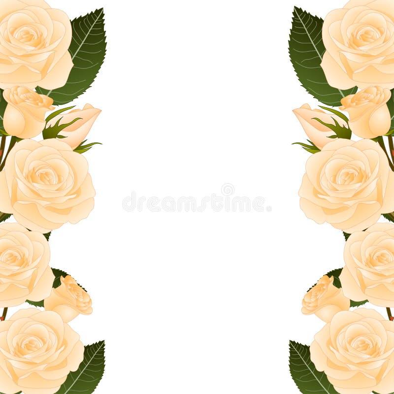 Orange Rose Flower Frame Border. isolated on White Background. Vector Illustration. royalty free illustration