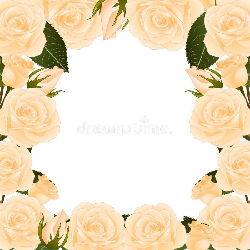 Orange Rose Flower Frame Border. isolated on White Background. Vector Illustration. stock illustration