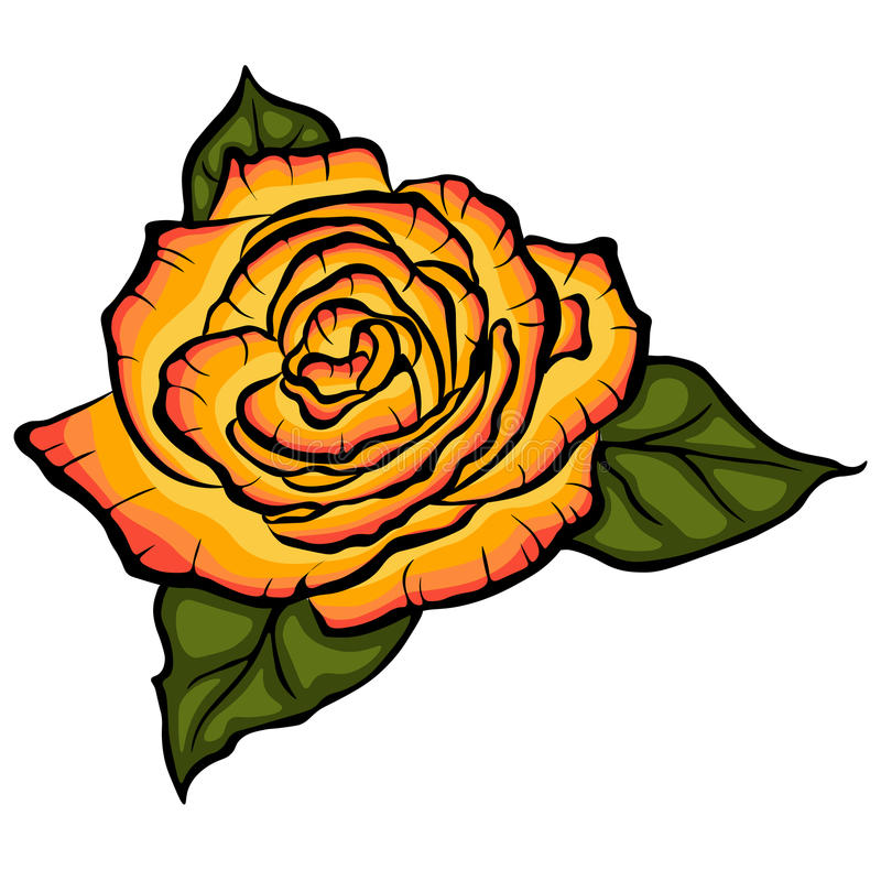 Orange rose with green leaves. Black lined rose with leaves on white background stock illustration