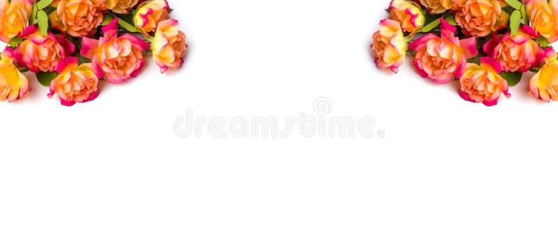 Orange rosgarnering med stället för text royaltyfri bild