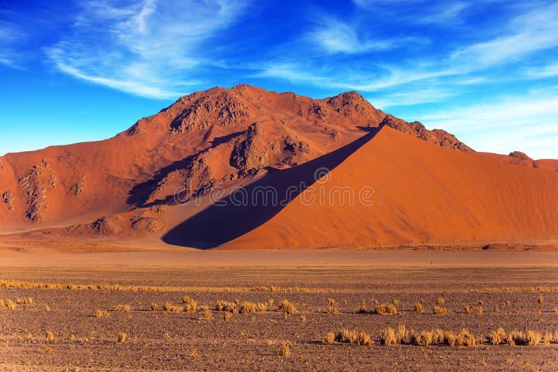 Orange, rote und gelbe Dünen stockfotografie