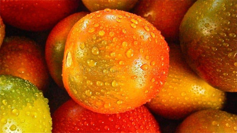 Orange Round Fruit Free Public Domain Cc0 Image