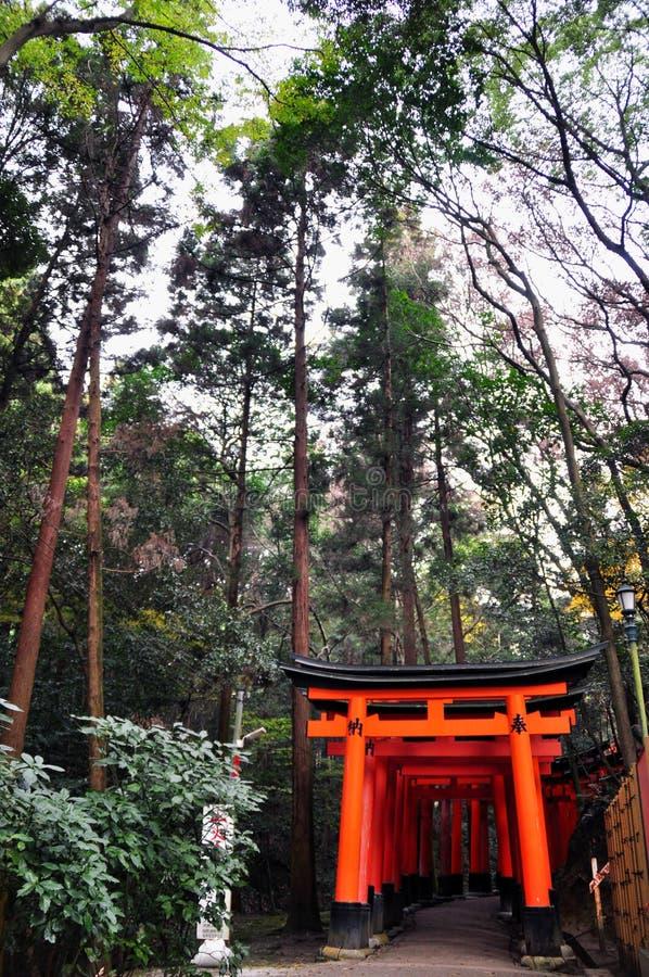 orange s-torii arkivbild