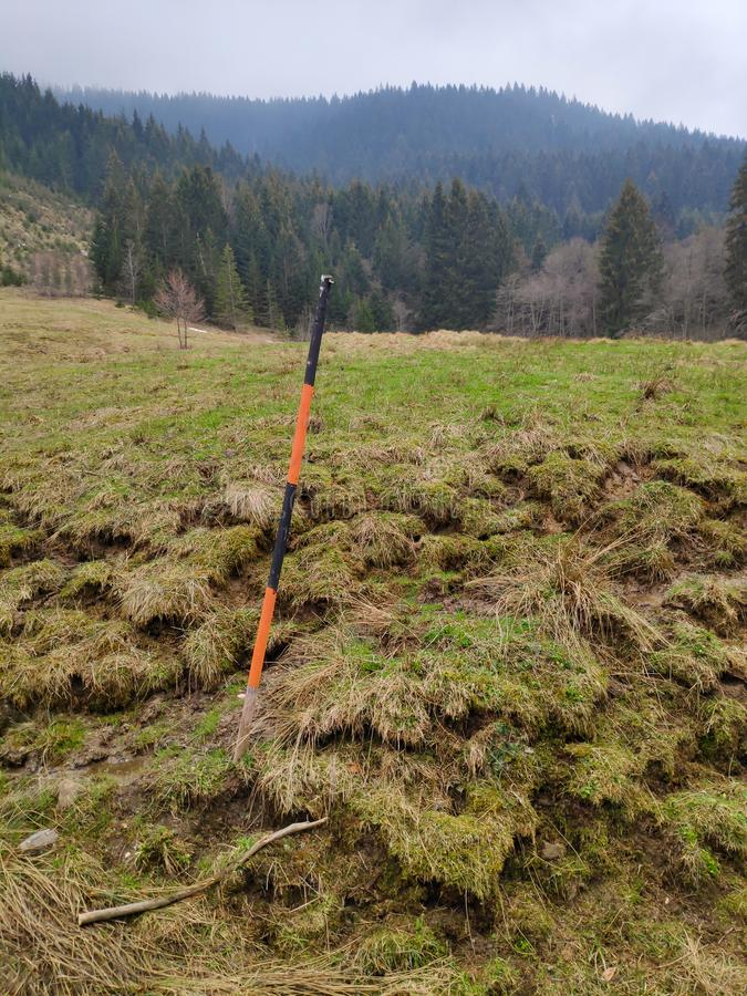 Orange schwarzer Delineator am Waldweg lizenzfreies stockfoto