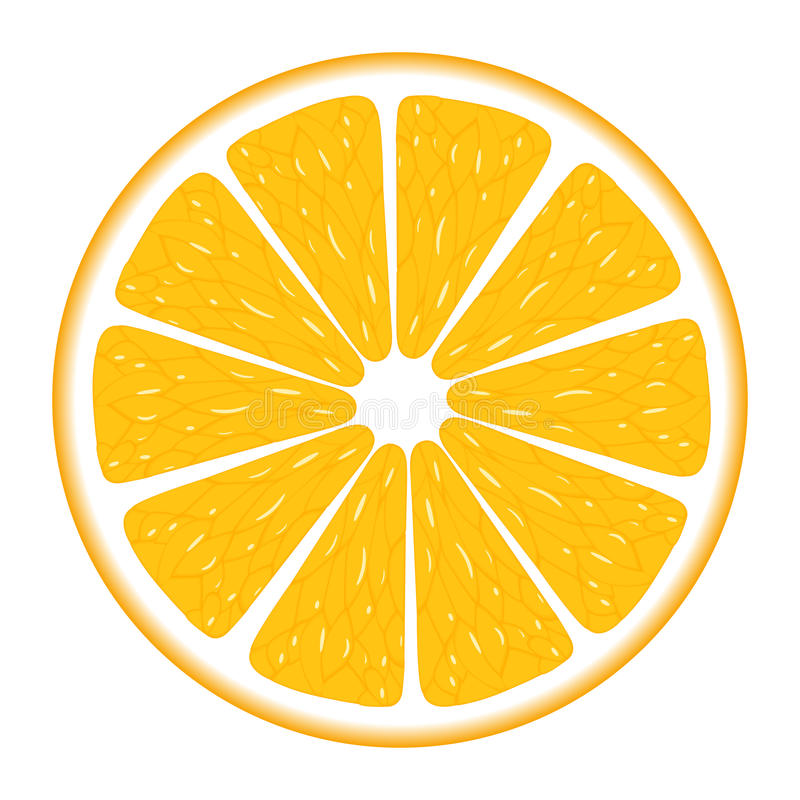 orange segment stock vector illustration of citrus refreshment rh dreamstime com orange vector control orange vector free