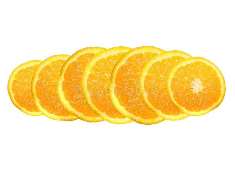 Download Orange segments stock photo. Image of plant, succulent - 8197088