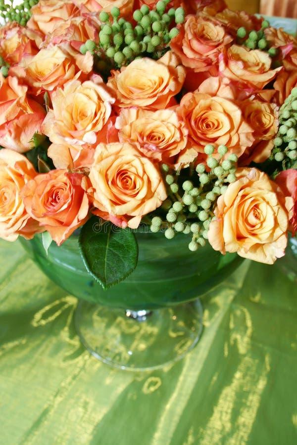 Orange siamesische Rosen 007 stockbilder