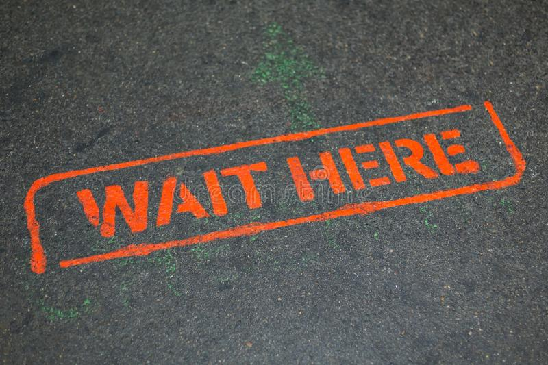 Orange sign WAIT HERE on asphalt, place to wait for boarding the bus. royalty free stock photo