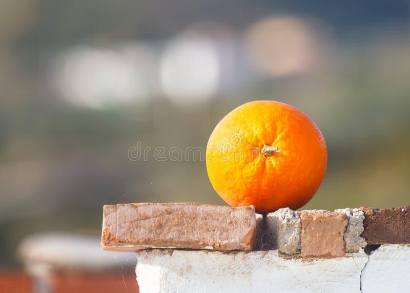 Orange simple image stock