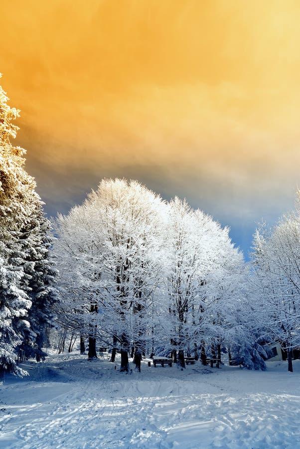 Download Orange sky in mountain stock photo. Image of frozen, evening - 21626274