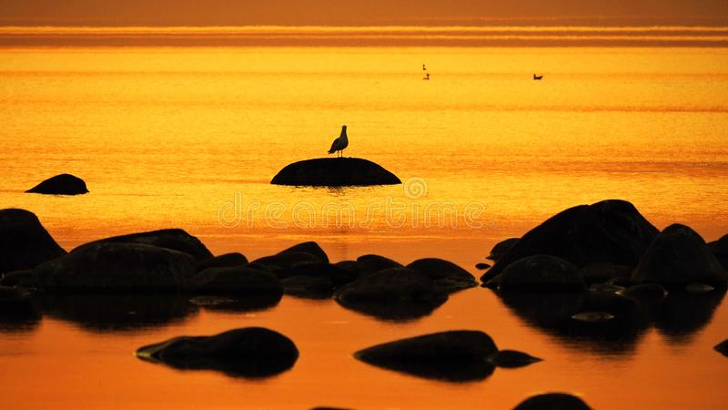 Orange sky and water after sunset royalty free stock image