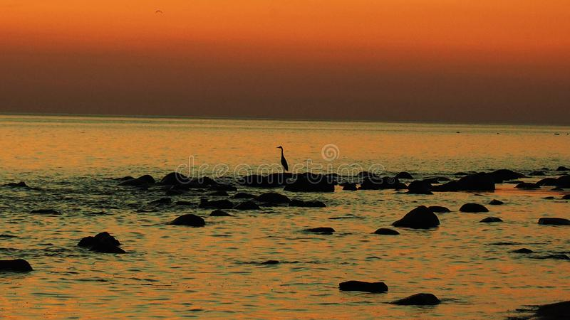 Orange sky and water after sunset stock image