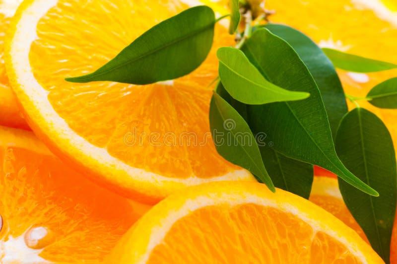 Orange slice royalty free stock image