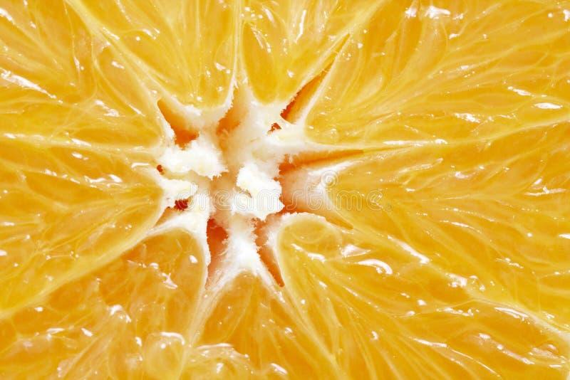 Orange slice. A macro shot of an orange slice stock images