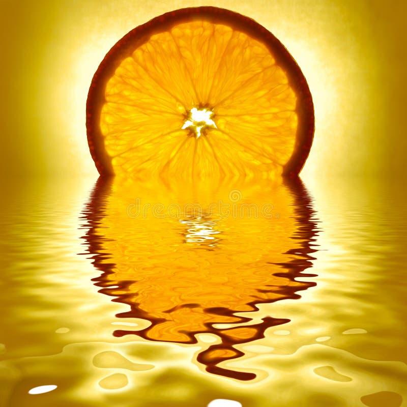Download Orange slice stock image. Image of macro, slice, backgrounds - 7896787