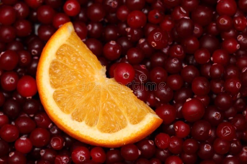 Orange slice and cranberries. Orange slice on cranberries background royalty free stock photography