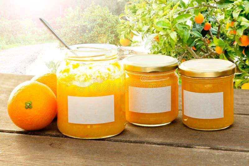 Orange sol för marmeladeskedträd arkivbild