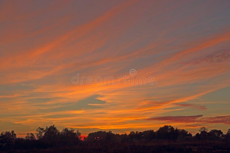 Orange solnedgång över träd Skymning med ljus solnedgång solnedgång för sky för aftonliggandehav royaltyfria foton