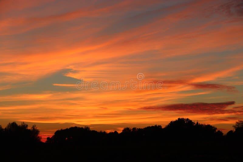 Orange solnedgång över träd Skymning med ljus solnedgång solnedgång för sky för aftonliggandehav fotografering för bildbyråer