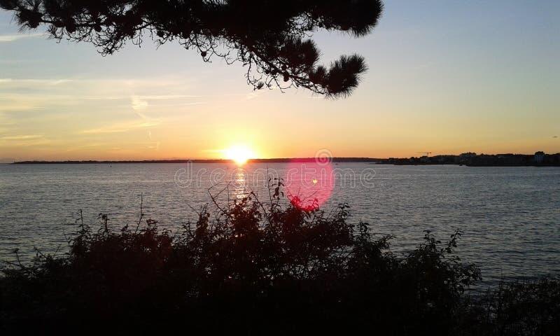 Orange solnedgång med träd på havet arkivbilder