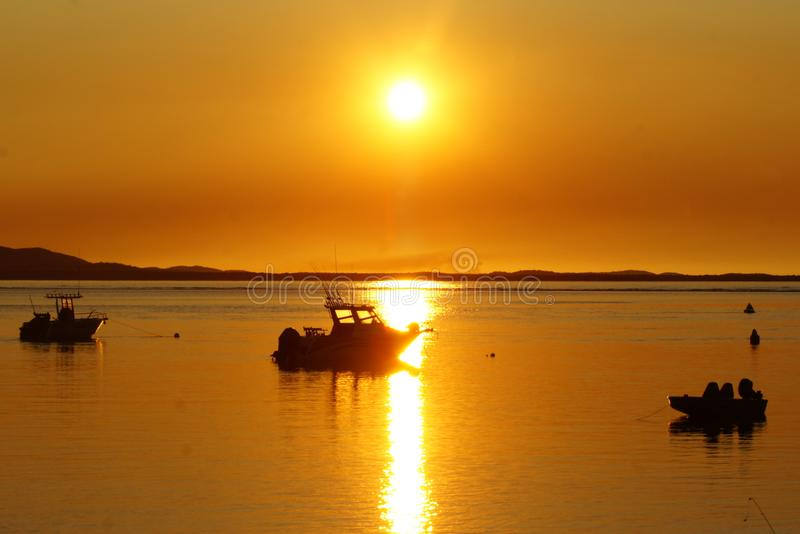 Orange solnedgångfiskekonturer arkivfoton