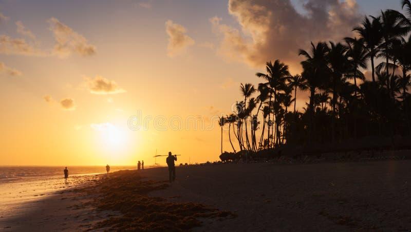 Orange soluppgång över den Atlantic Ocean kusten med palmträd arkivfoto