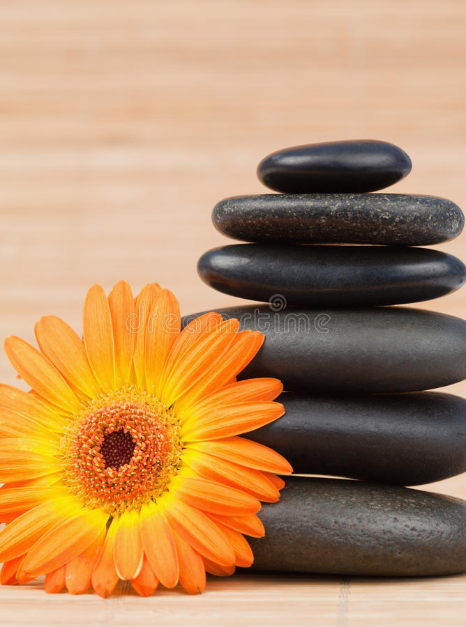 Orange Sonnenblume und ein schwarzer Steinstapel stockfotografie