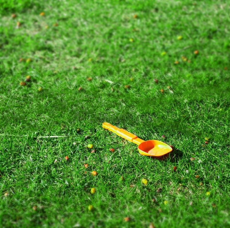 Orange spade i ett grönt fält fotografering för bildbyråer