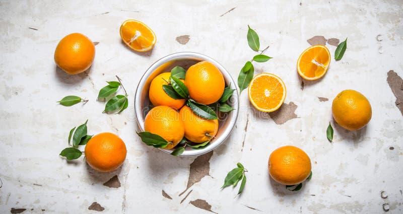 orange stil Nya apelsiner med sidor i en kopp royaltyfria bilder