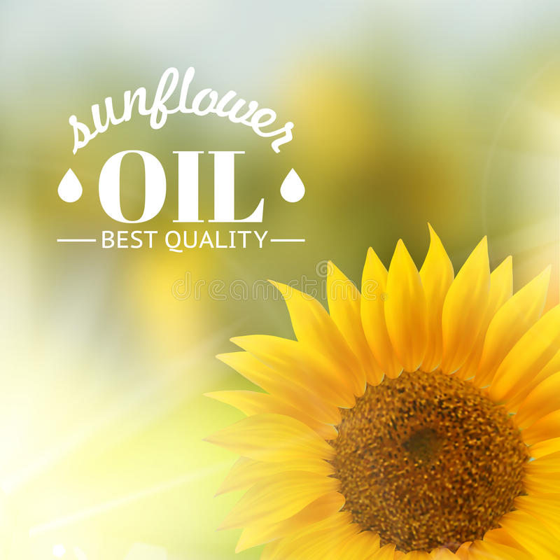Orange sunflower with text vector illustration