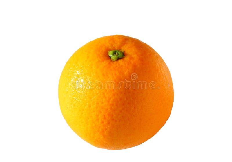 orange sunkist royaltyfri bild