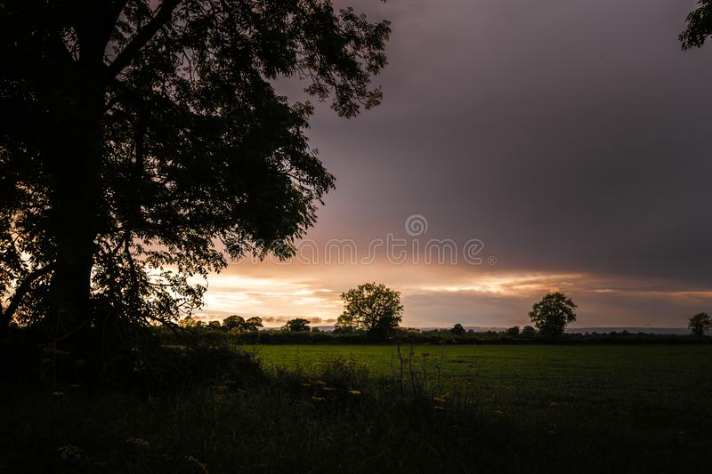 A orange sunset over the fields of Yorkshire in the North of England with a silhouette of a large tree in the foreground stock image