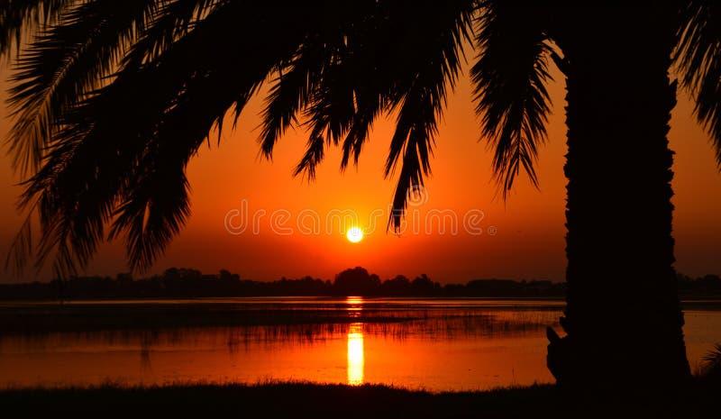 Orange sunset over tranquil lake royalty free stock photo