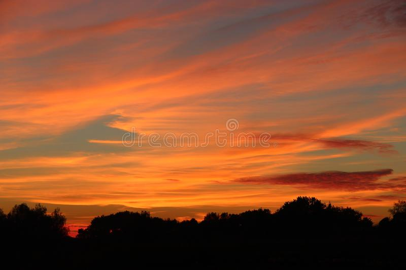 Orange sunset over trees. Twilight with bright sunset. Evening landscape stock image