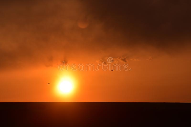 Orange sunset with two birds. Bright orange sunset with two birds silhouetted as they fly past.  Ominous clouds above in the sky royalty free stock photo