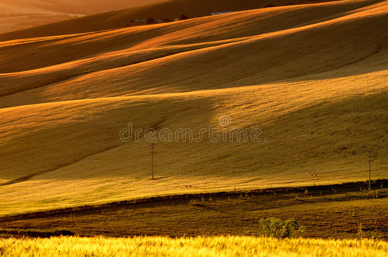 Orange sunset. On the typical italian coutry stock image