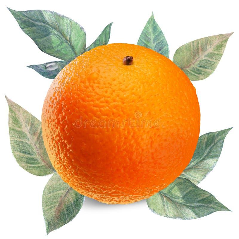 Orange sur le blanc avec le chemin de coupure images stock